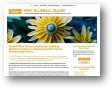 719.com.blueballdesign.blueball-slider.jpg