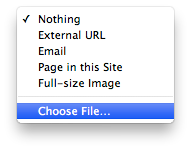 """Choose File…"" option in Link Inspector"